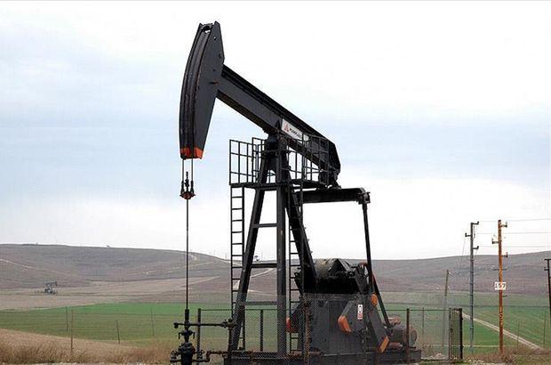 İki ayrı yerde petrol arayacak
