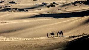 Patara Plajı, turistleri kum tepeleriyle çekiyor