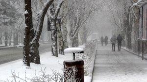 Erzurum ve Erzincan'a lapa lapa kar yağdı