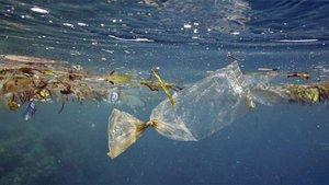 Denizi kirletenlere 5 milyon liraya kadar ceza verilecek