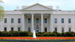 Beyaz Saray'dan İdlib saldırısıyla ilgili flaş açıklama