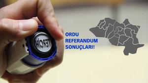 Ordu Referandum sonuçları 2017 Evet Hayır oranı