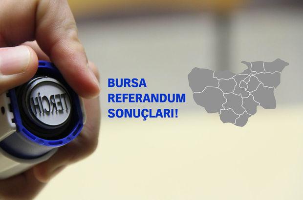 Bursa Referandum Sonuçları - 2017 Bursa'da Evet Hayır Oy Oranları