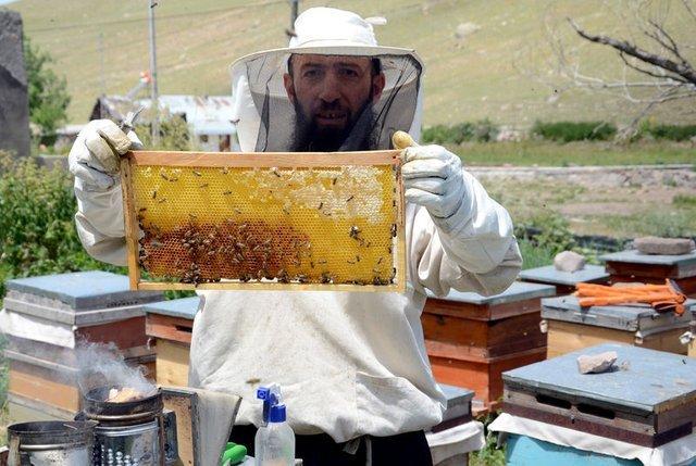 Kars'taki bal üretiminde yüzde 80 düşüş yaşandı