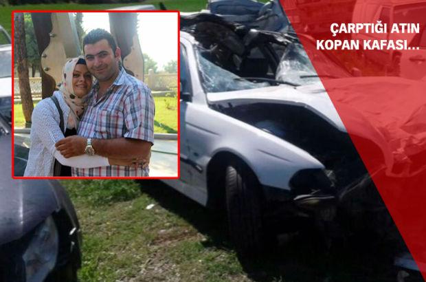 Kazada kopan atın kafası sürücüyü öldürdü
