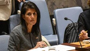 ABD'den Suriye ve Kuzey Kore çağrısı