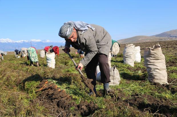 Başbakanlık mevsimlik tarım işçileri için harekete geçti