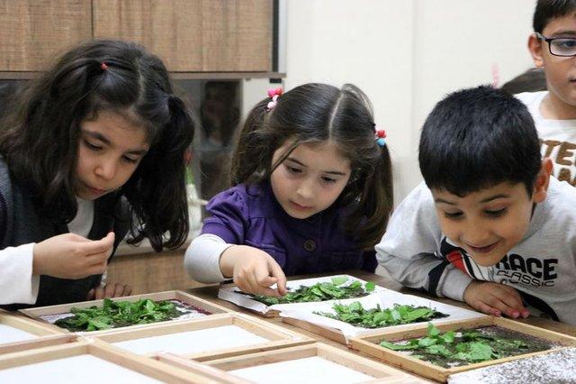Evlerinde ipek böceği yetiştirerek 6 bin lira kazanacaklar