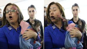 Şempanze Can, Fatma Şahin'e zor anlar yaşattı