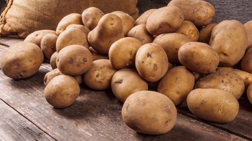Domatesten sonra şimdi de patates