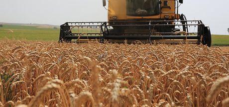 Rusya, tarımda iki hafta içinde çözüm umuyor