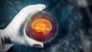 Bilim insanları laboratuvarda mini beyin üretti!