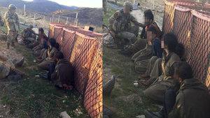 Tunceli Hozat Aliboğazı bölgesinde 5 terörist ele geçirildi