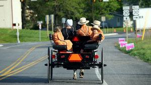 ABD'de Amish halkı, teknolojiden ve modern dünyadan uzak yaşıyor