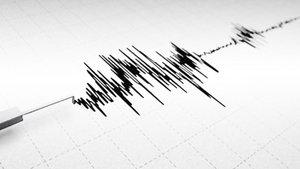 Aydın'da 4,2 büyüklüğünde deprem meydana geldi