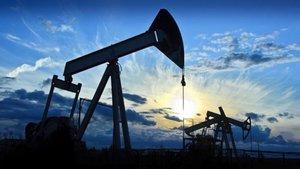 TPAO petrol arama çalışmalarına başladı