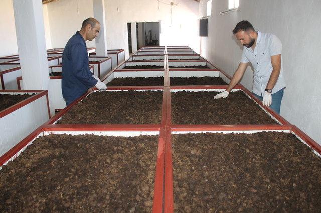 200 bin solucanla üretime başladı, 10 ayda 2 milyon solucana ulaştı