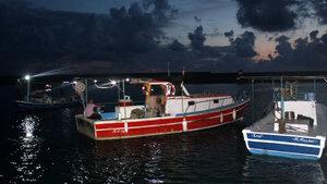 Antalya Gazipaşa Limanı'nda ceset alarmı