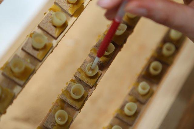 Ağrı'da arı sütünün kilosu 3 bin liradan satılıyor