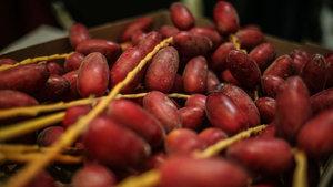 Ramazan öncesi hurma fiyatları artıyor