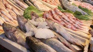 """Balık fiyatlarında """"ramazan"""" indirimi"""