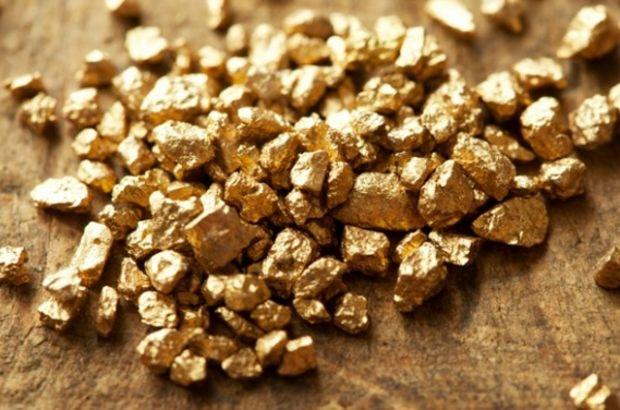 altın, ithalat