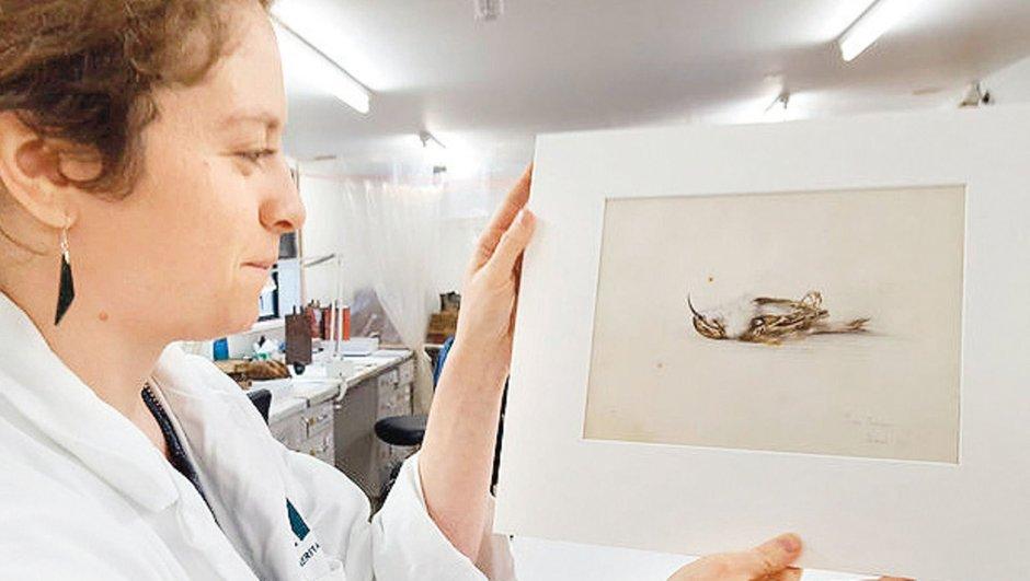 Antarktika'da 118 yıllık resim