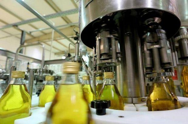 Türkiye'nin zeytinyağı ihracatında önemli artış