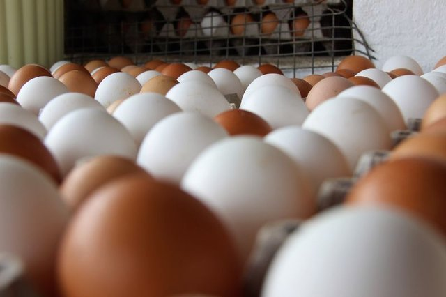 Yumurta yemenin faydaları..