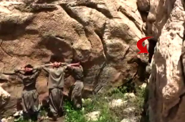 PKK'lı terörist