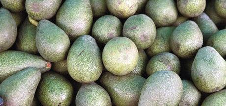 Avokado ve chia iştahı kesiyor!