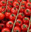 Seradaki üretim döneminde marketlerde kilogramı 10 lirayı bulan domateste, fiyatlar, tarla hasatlarının başlamasıyla 1 liraya kadar geriledi