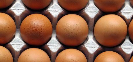 """""""Yumurta fiyatları yılın en düşük seviyesinde"""""""