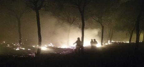 İspanya'da büyük orman yangını: Tatil merkezleri boşaltıldı!