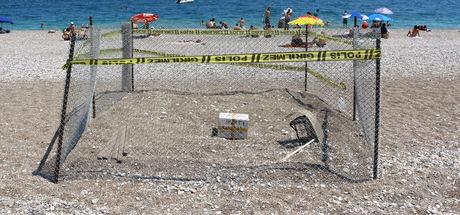 Antalya'da caretta caretta yumurtasına polis koruması