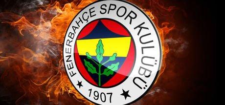 Fenerbahçe'nin Ben Arfa inadı