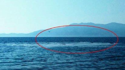 Yer: Çanakkale Ayvacık! Denizde korkutan görüntü!