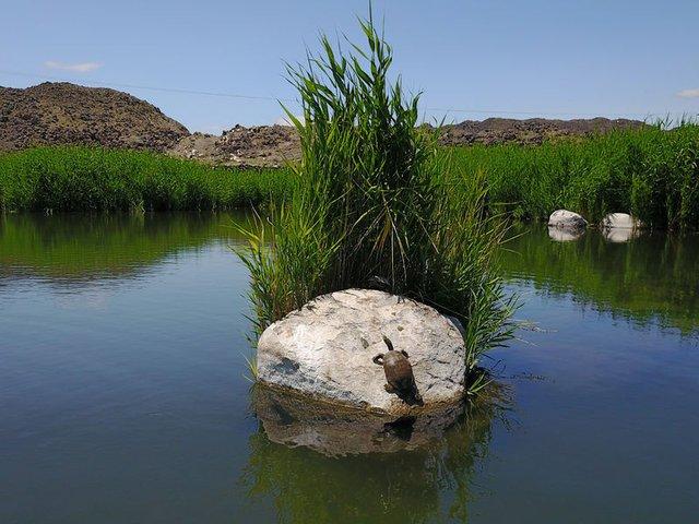 Ağrı Dağı'na İran, Nahçıvan ve Ermenistan'dan turistler akın ediyor