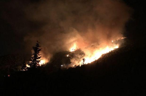İzmir Karşıyaka'daki orman yangını kontrol altına alındı