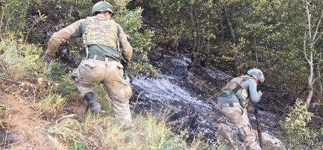 Bitlis'te korucuyu şehit eden 2 PKK'lı etkisiz hale getirildi