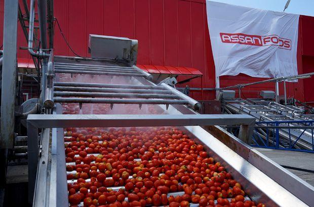 assan gıda, domates, ihracat