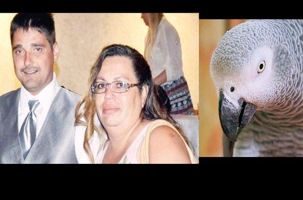 ABD papağan cinayet