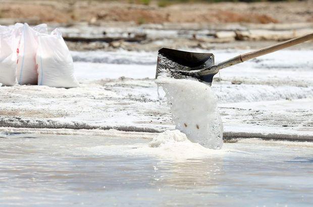 Sivas'tan İspanya'ya doğal kaynak tuzu gönderiliyor