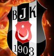 Beşiktaş Kulübü, Orkan Çınar