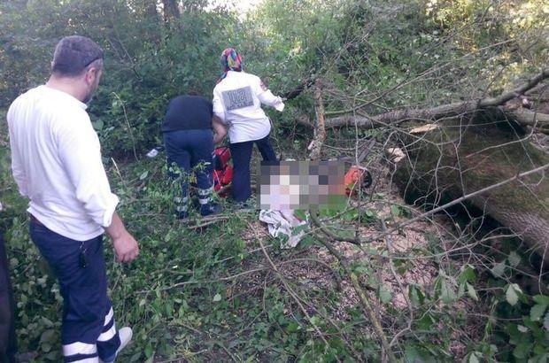 Sakarya'da orman işçisi kesik ağacın altında ölü bulundu