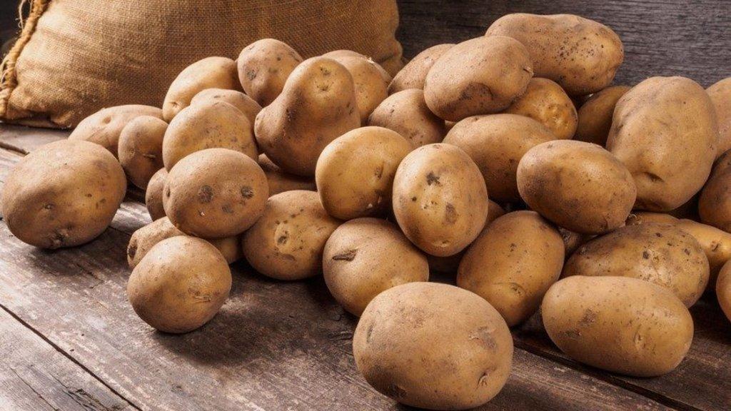 Patatesi neden 5 liraya yedik?