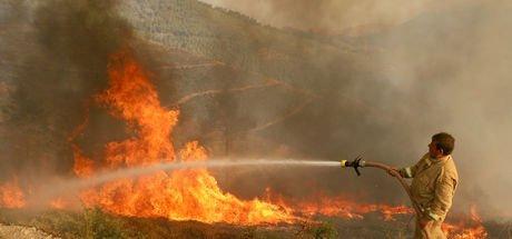 İzmir Bayındır'da yangın çıktı