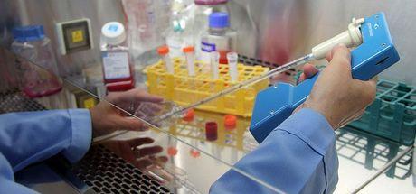 ABD'de ilk kez insan geni embriyosu değiştirildi