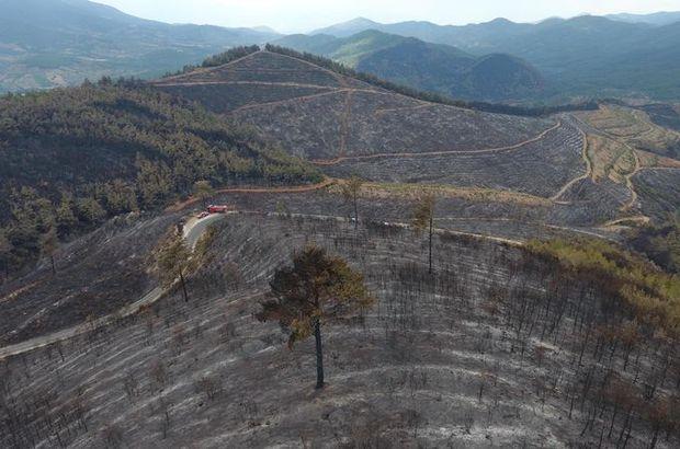 İzmir'deki yangın sonrası bölge havadan böyle görüntülendi