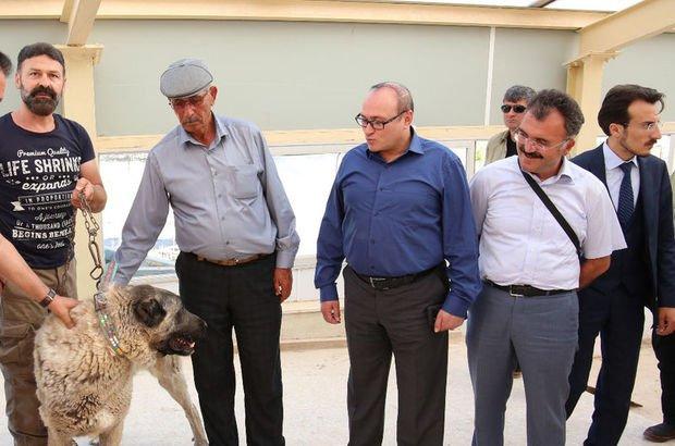 Kahraman Ömer Halisdemir'in babasına kangal köpeği hediye edildi